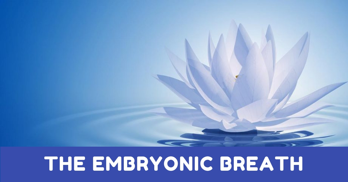 The Embryonic Breath
