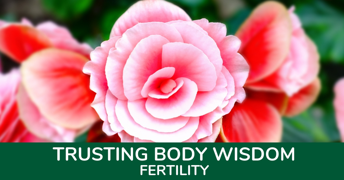 Trusting Body Wisdom - Fertility